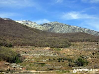 Cerezos en flor en el Valle del Jerte - ruta senderismo;buitrago de lozoya madroño patones